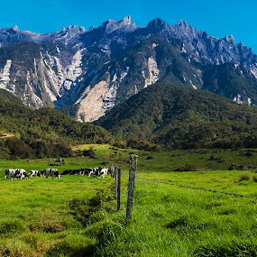 Mt. Kinabalu by Adam Chua - Landscapes Mountains & Hills (  )