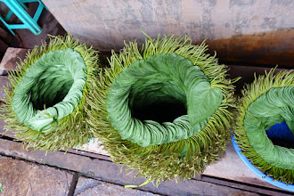 Photo: Leaf that is used for chewing the betel nut.