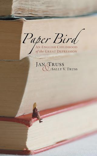 Paper Bird cover