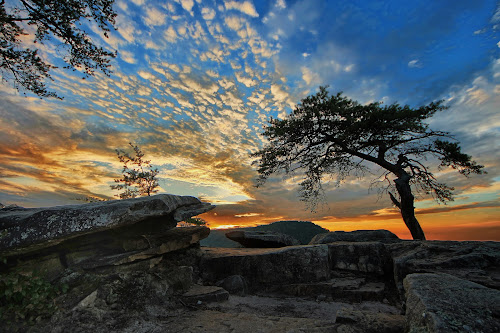by Joel Eade - Landscapes Sunsets & Sunrises ( beautiful, buzzards roost, perfect, cool, sunset, prety, tree, the best, stone )