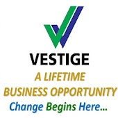 Vestige Business Presentation (Hindi)