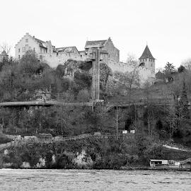 Castle Laufen by Svetlana Saenkova - Black & White Buildings & Architecture ( hill, castle, laufen, switzerland, historical )