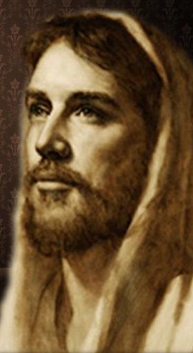 The Bible Images screenshot 6