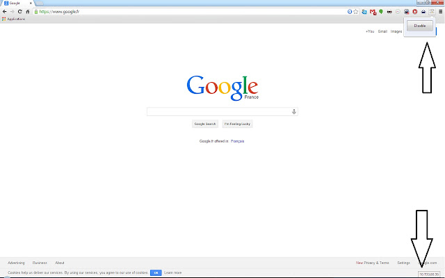 Website IP