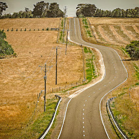 There Was A Crooked Road by Tony Buckley - Landscapes Prairies, Meadows & Fields ( farm, australia, road, landscape )