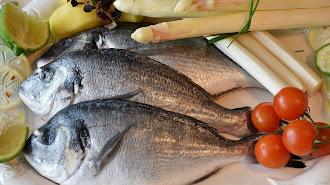 Los pescados blancos tienen alto contenido en proteína