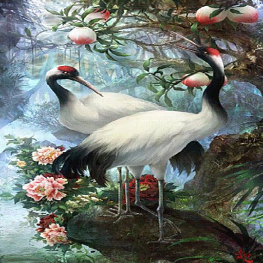 White Birds Live Wallpaper