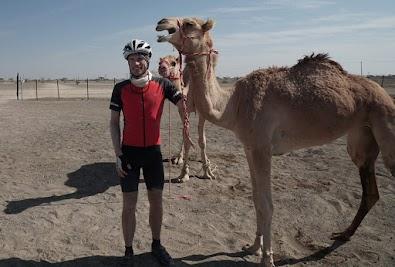 Dieses Kamel mag mich nicht