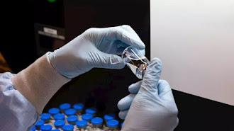 La búsqueda de una cura o una vacuna del coronavirus continúa.