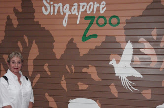 Photo: Then it was off to Singapore to the BEST ZOO IN THE WORLD