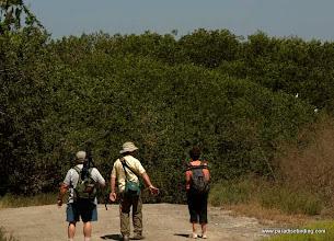Photo: Birding the mangroves at Laguna de Quelele