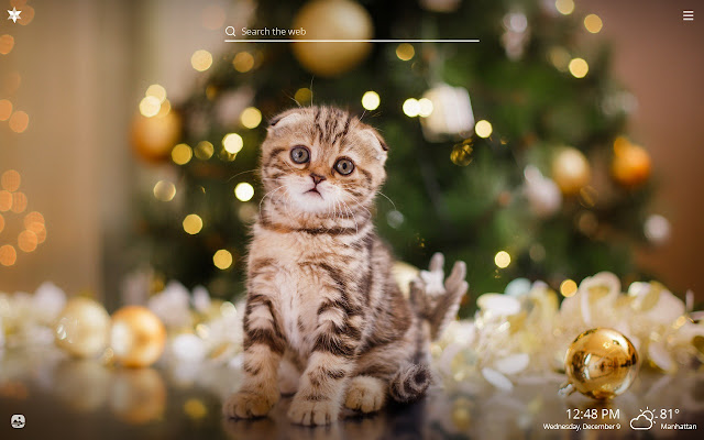 Christmas Cats HD Wallpapers New Tab Theme