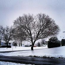 Photo: #snow #nieve #invierno