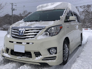 アルファード ATH20Wのカスタム事例画像 JAPAN20ALALさんの2021年01月02日23:50の投稿