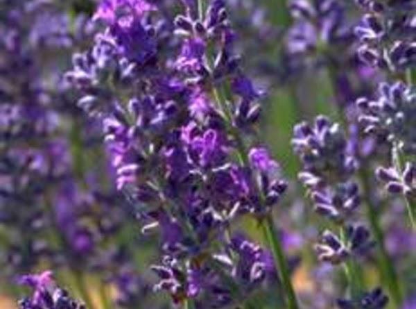 Lavender (Lavendula species) Lavender oil may be poisonous. . Tastes like: floral, slightly perfumed flavor