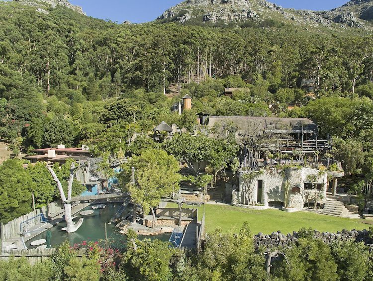 Late film-maker Keith Rose's 20-year labour of love, Blackwood Lodge in Hout Bay, has had its price cut by 25% to R29m.