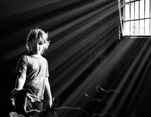 lightlightlight di Zerosedici
