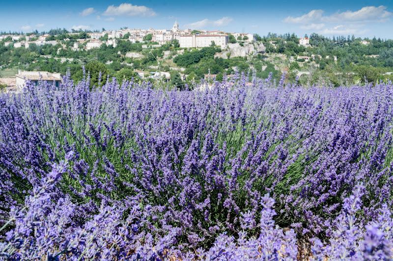 Sault - Provence di fasele72
