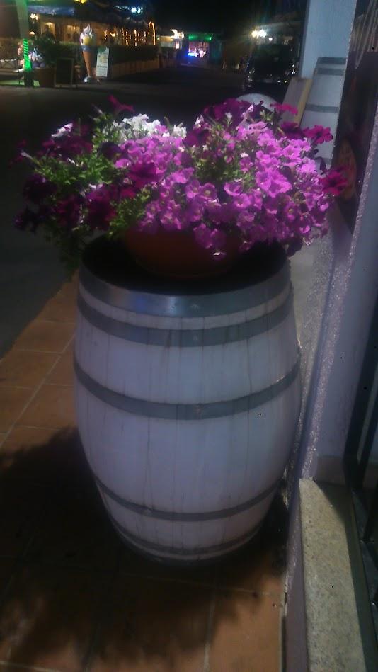 Бочка с цветочками на главной улочке Сан Теодоро