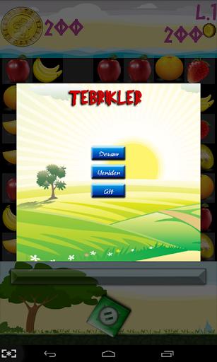 Meyve Patlatma Oyunu 1.1 screenshots 7