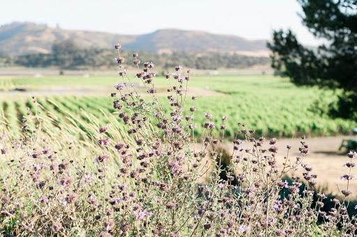 Tyler Winery - Lompoc, CA | Tock