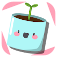 My Plant Evolution