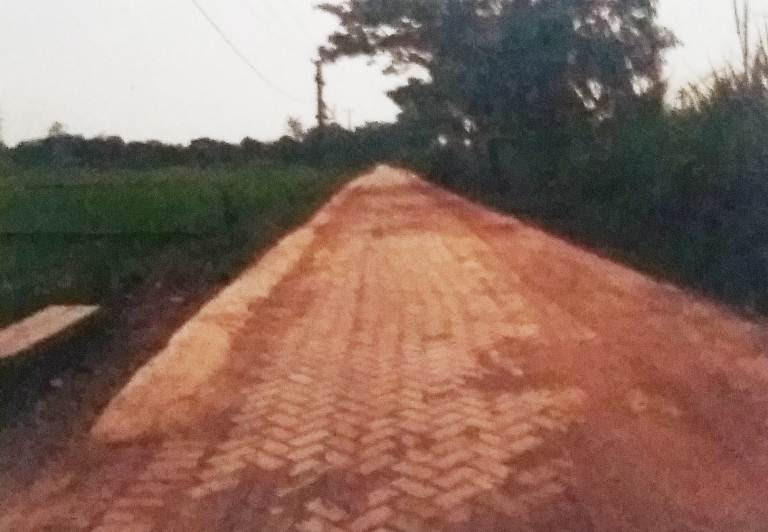 Profil Desa Kwadungan Ngawi