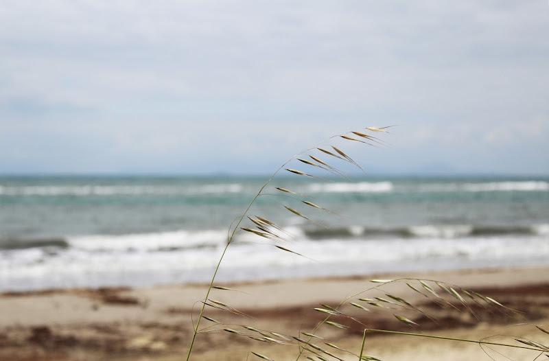 Vento dal mare di Capa95