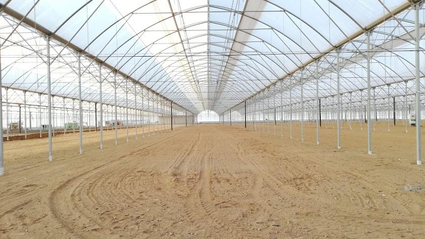 Imagen de la estructura de invernaderos que Inverca está construyendo en Campohermoso.