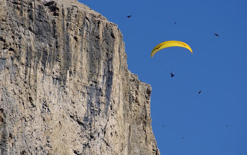 Volare di carlo-bi