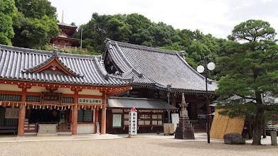 Photo: 法楽殿(左)、本堂(右)、多宝塔(奥)