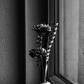 Window vase by Billy Kennedy - Black & White Objects & Still Life ( natural light, vase, window )