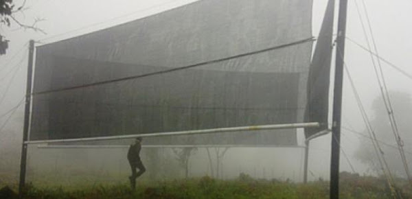 <p><em>Image caption: The triangular fog net system provides 1,500 litres of clean water, daily, for Tshanowa and the community (Image Source: Robert Maisha, University of Pretoria).</em></p>