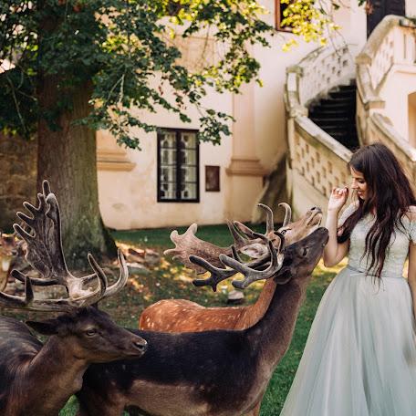 Wedding photographer Aleksandra Shulga (photololacz). Photo of 22.11.2017