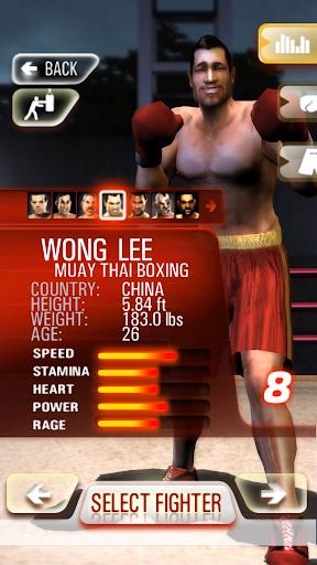 Realtech Iron Fist Boxing ss2