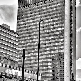 City Tower by Brian Egerton - Buildings & Architecture Office Buildings & Hotels ( hdr, cityscape, black and white, building, street photography, architecture )