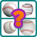 Sport ball guess icon