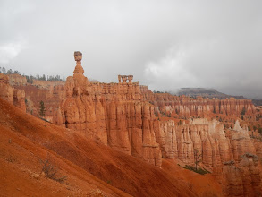 Photo: Thor's Hammer stands above the other hoodoos in Bryce Canyon.