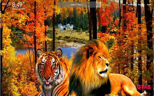 Lion Tiger Wallpapers Hd Theme