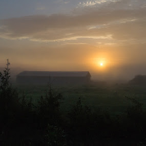 Foggy Morning by VAM Photography - Landscapes Prairies, Meadows & Fields ( fog, travel, sunrise, landscape, fields,  )