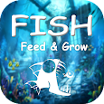 Tips and Strategy for Fish Feed and Grow apk
