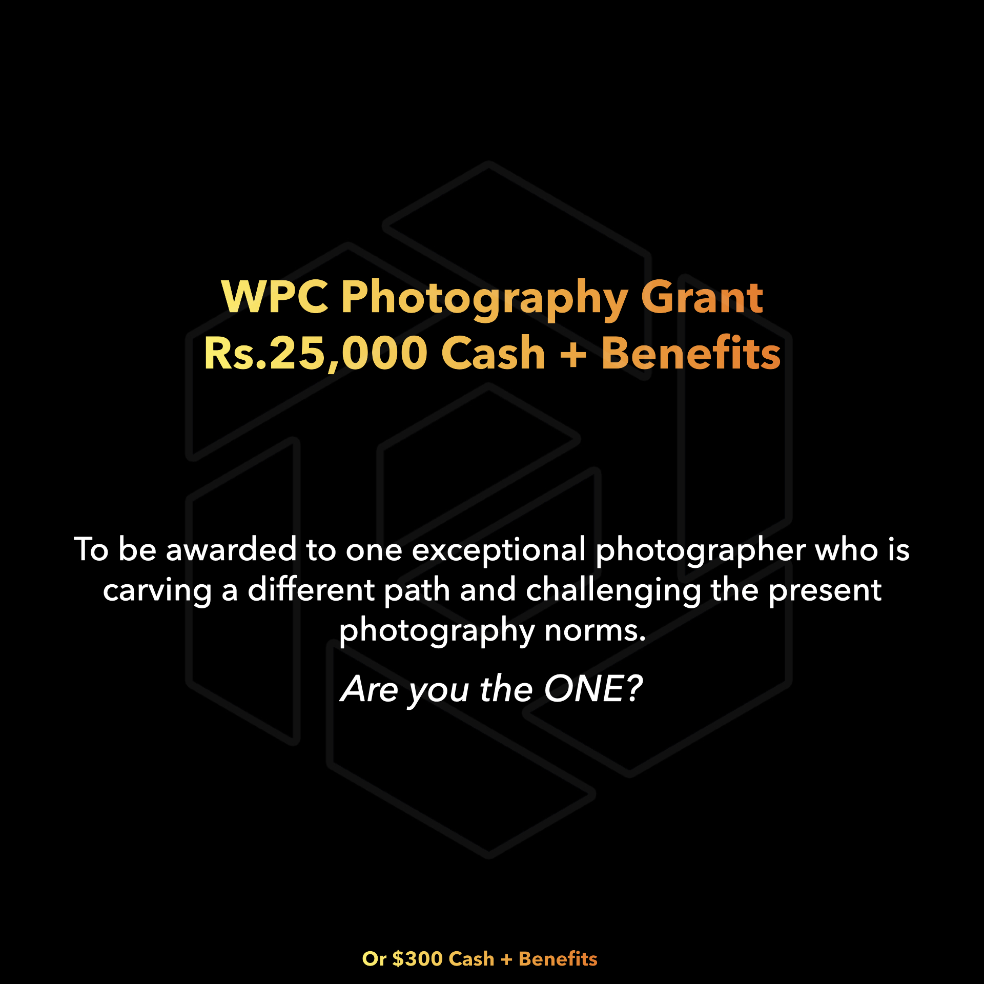 WPC Photography Grant 2020