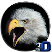 Eagle 3D Video Live Wallpaper