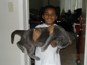 Photo: this cat is almost bigger than her! (Dec 31, 2010)