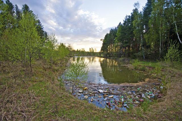 Развитие кемпингов как составляющая часть улучшения экологии водоемов