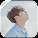 BTS Jungkook Wallpaper KPOP Icon