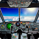 Pilot Airplane simulator 3D (game)