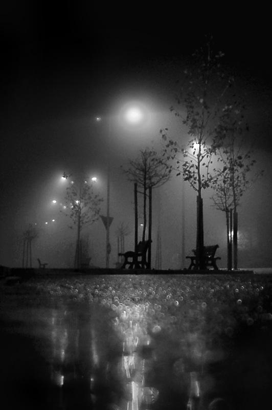 Pioggia e lampioni di californication