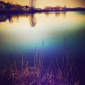 Lake by Nat Bolfan-Stosic - Landscapes Waterscapes ( reflection, village, peace, lake, evening )