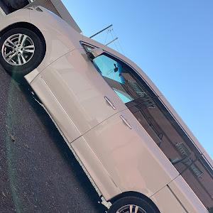 エルグランド TE52 highway starのカスタム事例画像 スリンさんの2020年01月02日16:09の投稿